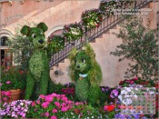 Lady & The Tramp Topiary at Epcot Flower & Garden Festival
