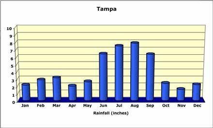 tampa-rainfall