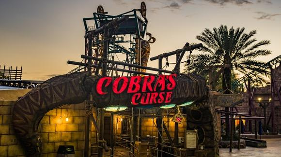 Cobra's Curse [© Busch Gardens. All rights reserved]