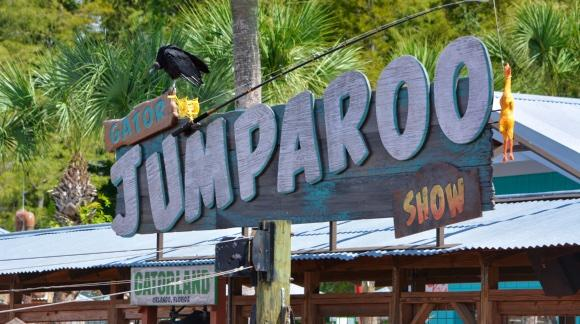 Gatorland's Jumparoo Alligator Jumping show [© 2019, floridareview.co.uk, all rights reserved]