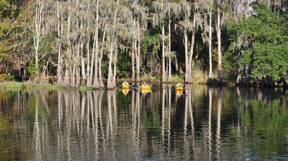Kayaking on Shingle Creek