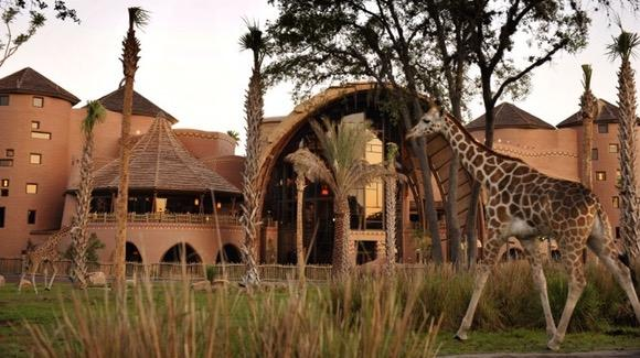 Kidani Village at Disney's Animal Kingdom Lodge [© Disney. All rights reserved]