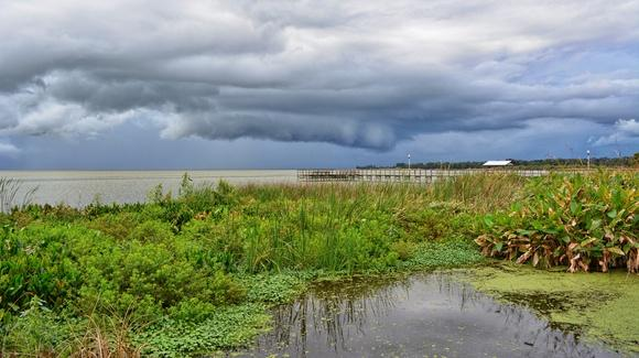 Brooding Storm over Lake Apopka