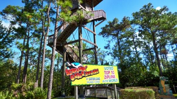 Screamin' Gator Zipline at Gatorland