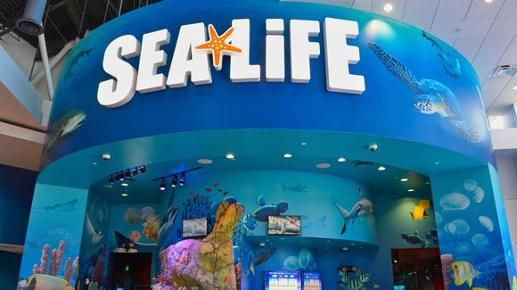 Sea Life, International Drive